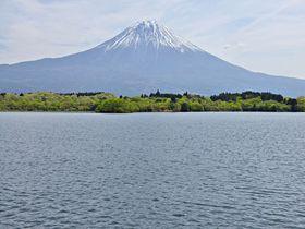田貫湖から出発!富士山の絶景が連続する長者ヶ岳ハイキング