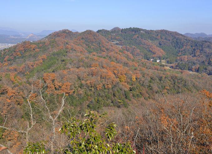 唐沢山は佐野市を代表する名跡と展望の山