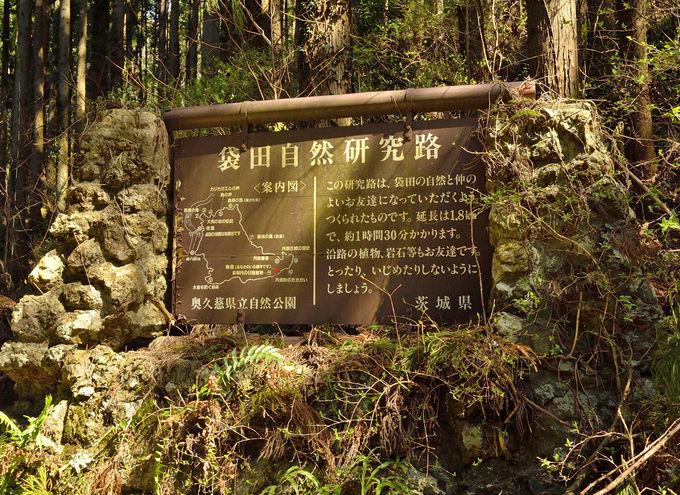 登山コース案内〜山頂から七曲りへ下山