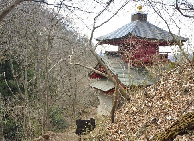 登山コース案内〜月居山の山頂(後ろ山)