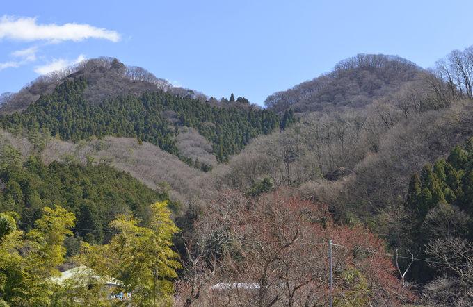 袋田の滝トンネルから月居山への登山