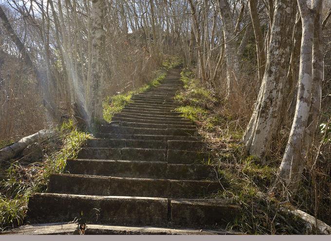 登山コース案内〜月居山の前山