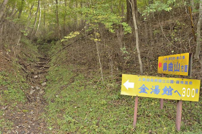 鼻曲山の登山〜金湯館の近くから登山開始
