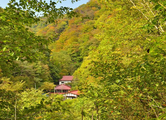 群馬で秘湯と展望を堪能する山旅~霧積温泉金湯館と鼻曲山