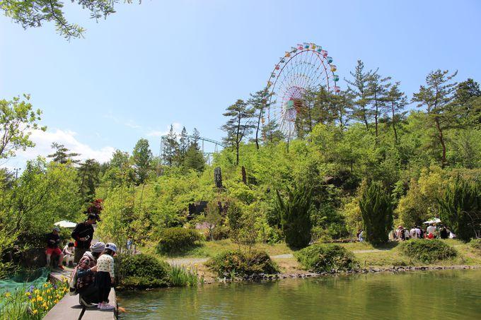 自然と動物が楽しめる展望ガーデン「恵那峡天界苑」