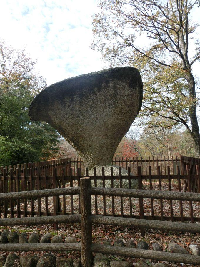 「傘岩」の奇跡のアンバランスさを見るには後ろから