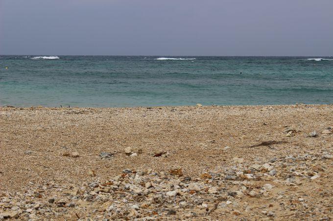 曇りでもビーチの散策は楽しめる