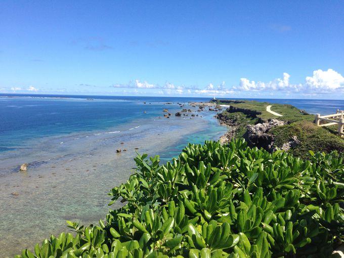 紺碧の海と緑の岬が美しい!東平安名崎