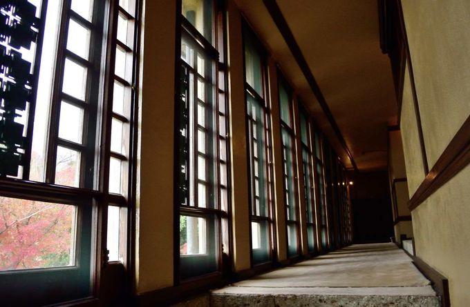 「木漏れ日」が落ちる飾り銅板の廊下