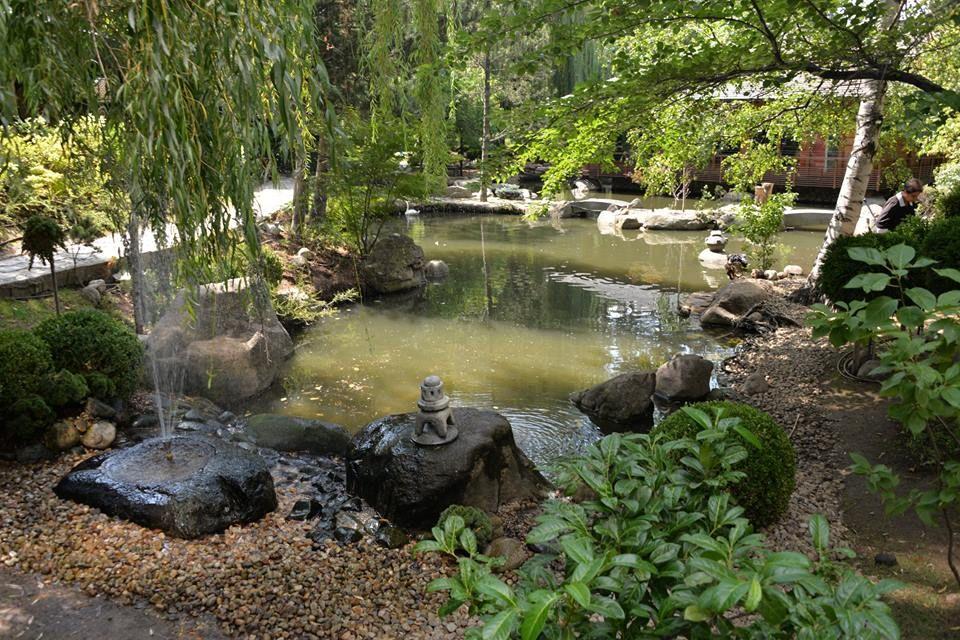 落ち着く日本庭園