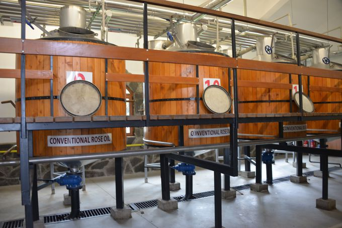 世界最大のローズオイル生産地!見どころも満載のブルガリア「バラの谷」
