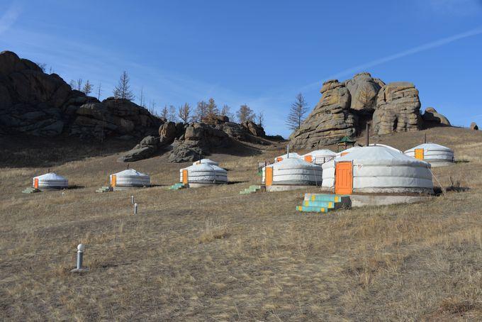 モンゴル伝統移動式住居ゲルに宿泊
