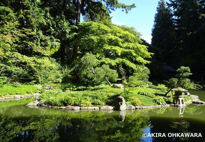 名門ブリティッシュコロンビア大学と新渡戸稲造記念庭園