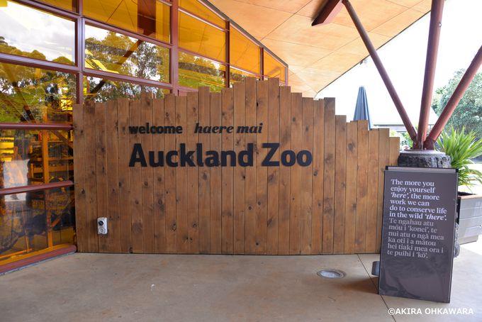 広大な敷地を誇る「オークランド動物園」