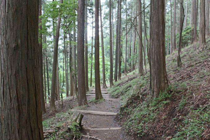 比叡山のふところにつつまれて
