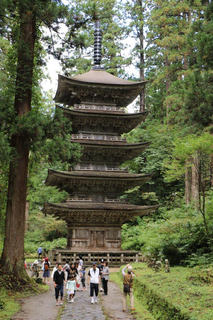 出羽三山の神域で、国宝「羽黒山五重塔」との対面