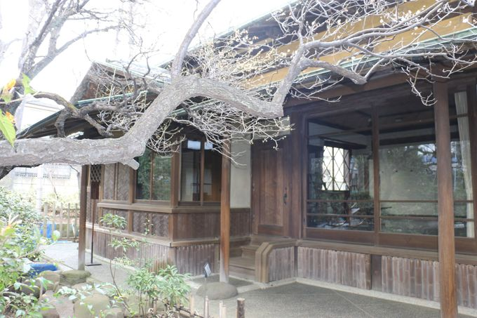 龍にこだわり、龍を名乗る川端龍子の「龍子記念館」