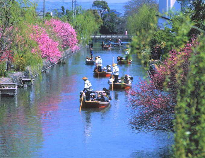 4.福岡発日帰りバスツアー(柳川の川下り&柳川城下散策)