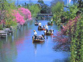 水の郷 柳川 川下りとうなぎのせいろ蒸しで風情ある旅を満喫!
