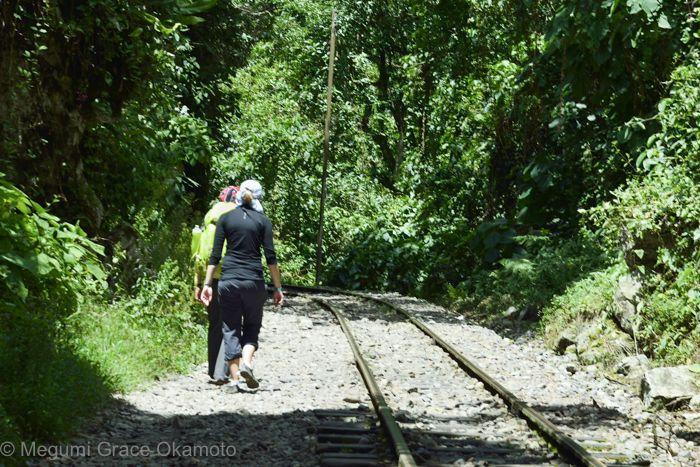線路沿いを、わくわくしながら歩こう