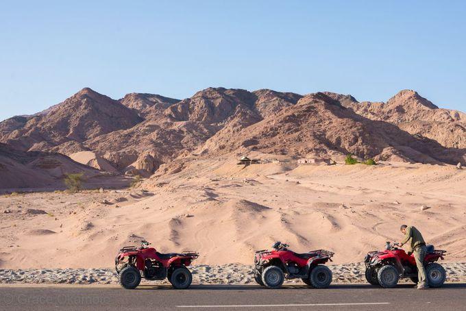 砂漠をフルスロットルで往け!バギー体験が面白い