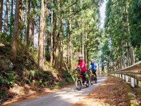 電動でラクラク!群馬・赤城山麓のグルメと文化を楽しむサイクリングへ
