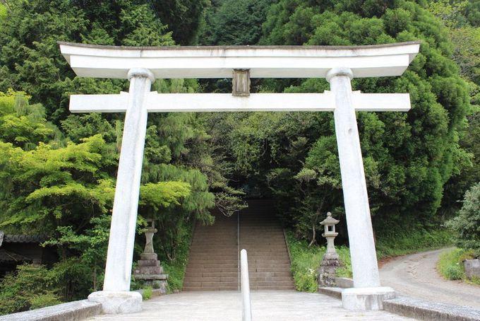 日本最古の神社 幣立神宮