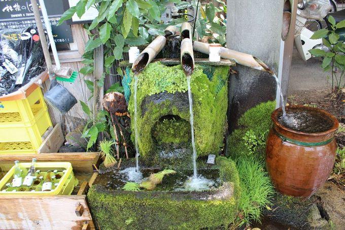 湧き水量は毎分60トン!熊本のパワースポット「阿蘇・白川水源」と「水基巡りの道」
