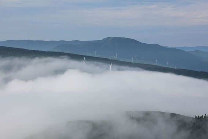 まるで天空にいるみたい!雲海に埋もれる風車が幻想的