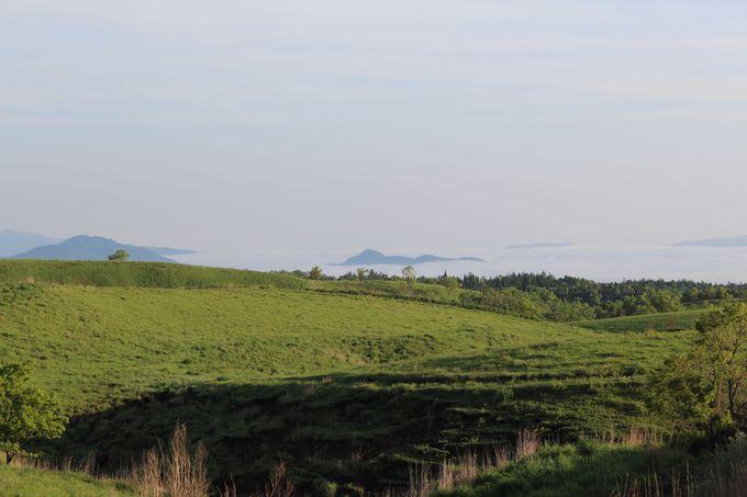 まるで海に浮かぶ島のよう北外輪山の外側「小国郷」の雲海