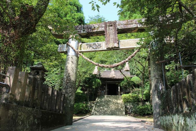 潜伏キリシタンのカモフラージュに使われた「崎津諏訪神社」
