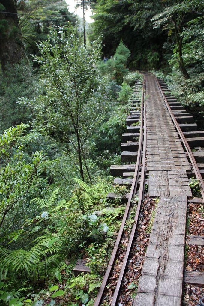 線路は続くよどこまでも!約8km続くトロッコ道