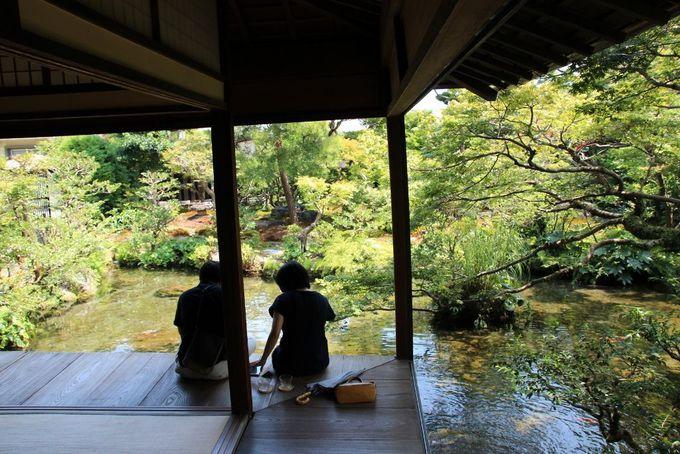 水屋敷と呼ばれる四明荘は癒しのスポット