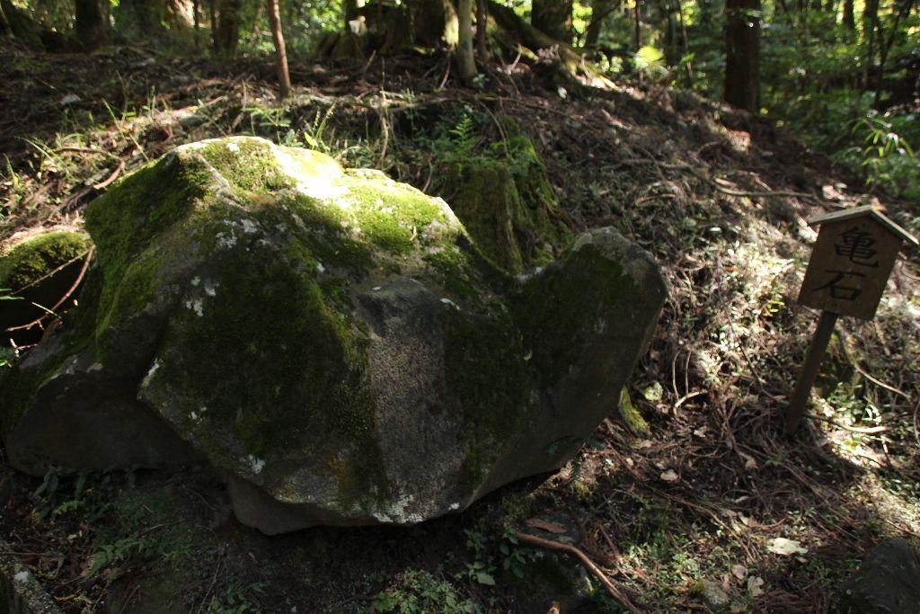 霧島に伝わる七不思議 亀石
