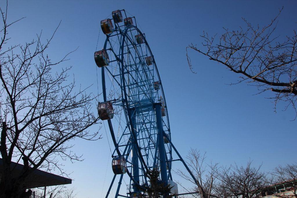 大人も子供も楽しめる遊園地と動物園