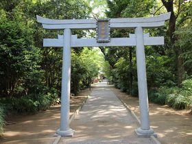 「神話のふるさと」宮崎で最強のパワースポット!「江田神社」