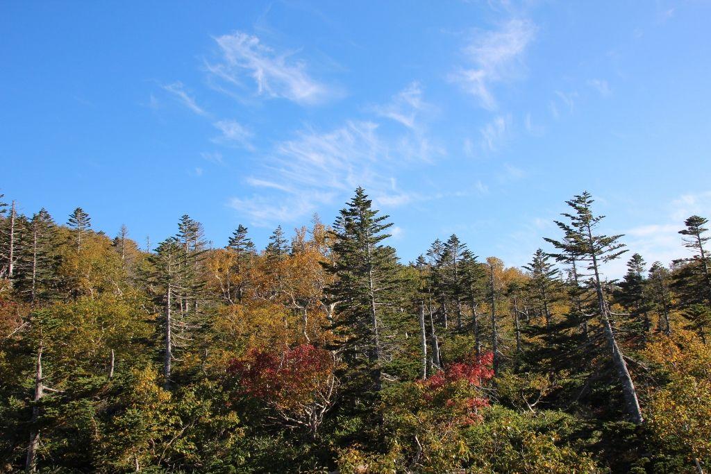 日本一開通期間の短い国道の頂点 絶景が広がる「知床峠」