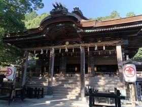 785段を上りきった後の癒し空間 香川「金刀比羅宮(こんぴらさん)」