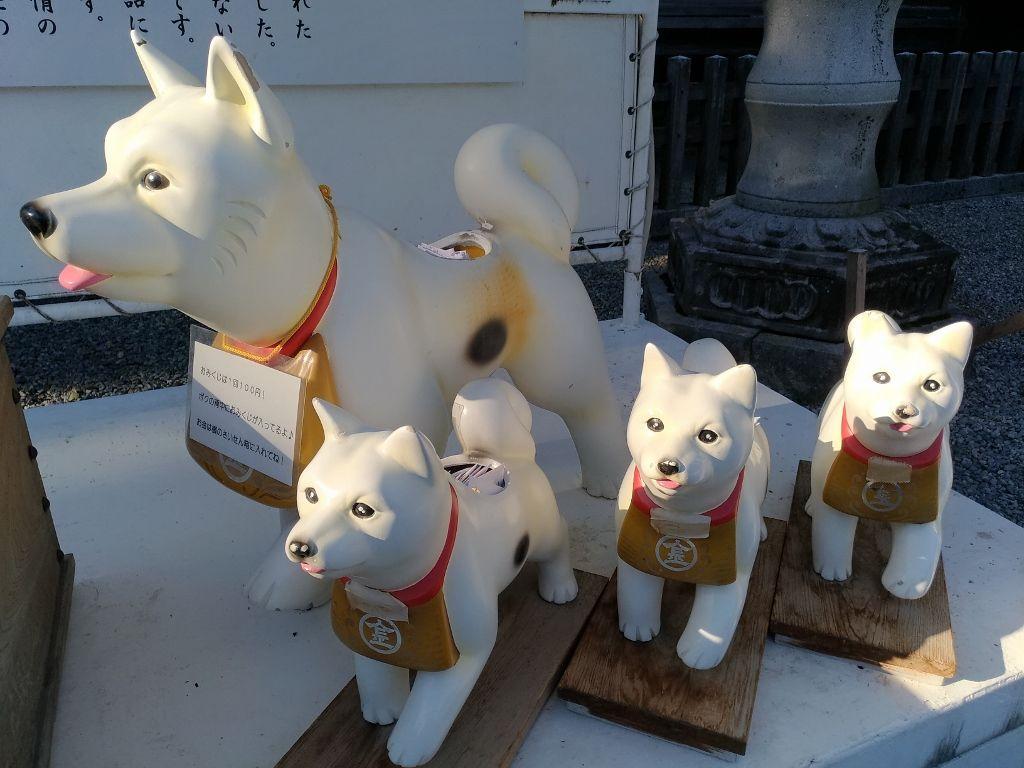 江戸時代は犬も参拝していた「こんぴら狗」