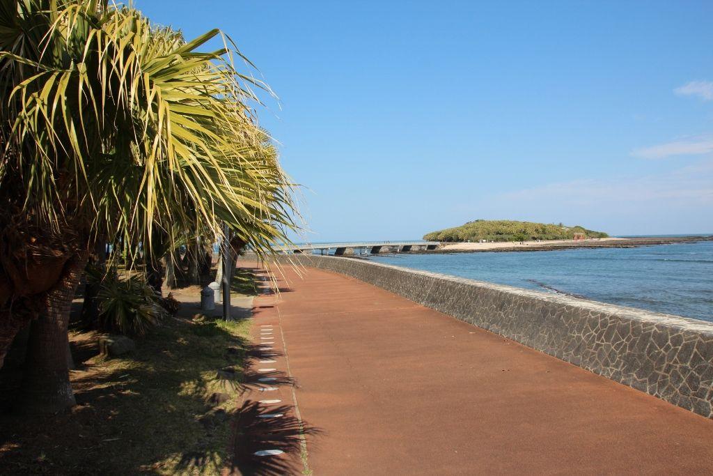 青島が一望に。散策路からの眺望