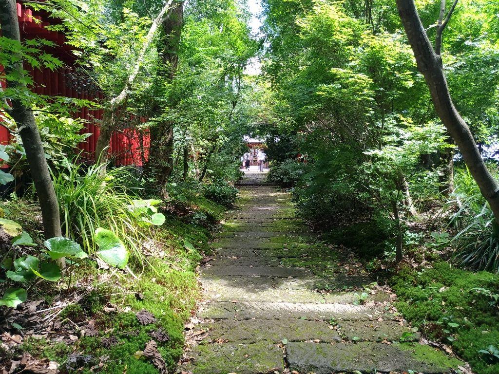 社殿への「行」は樹木のトンネル参道を