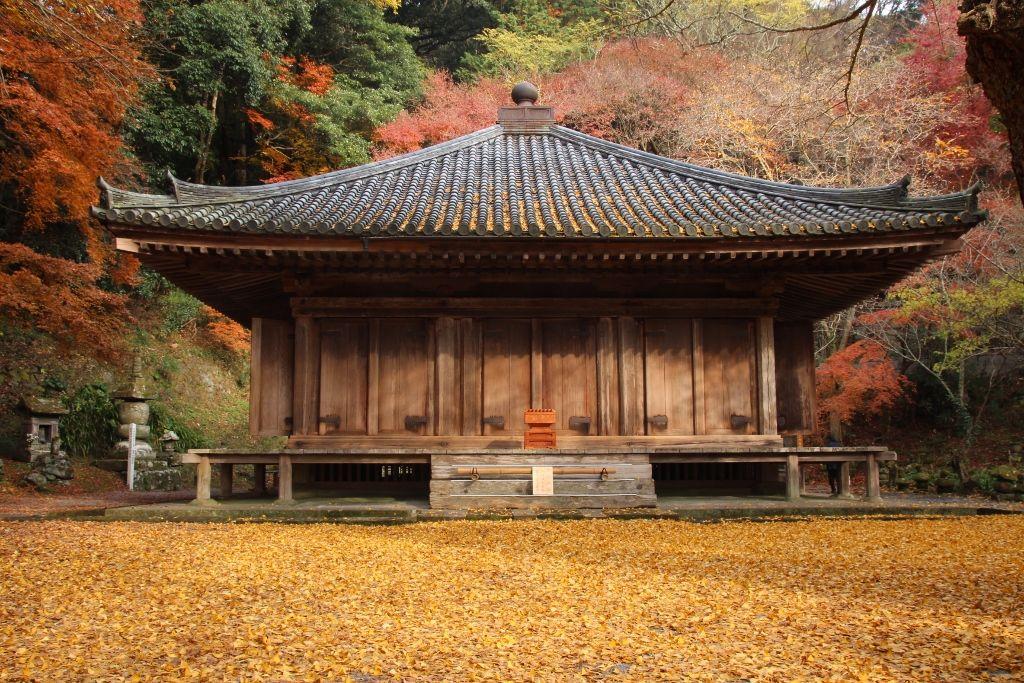 黄金の絨毯の上に建つ富貴寺大堂(阿弥陀堂)