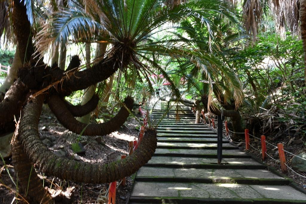 本土最南端にある神社「御崎神社」
