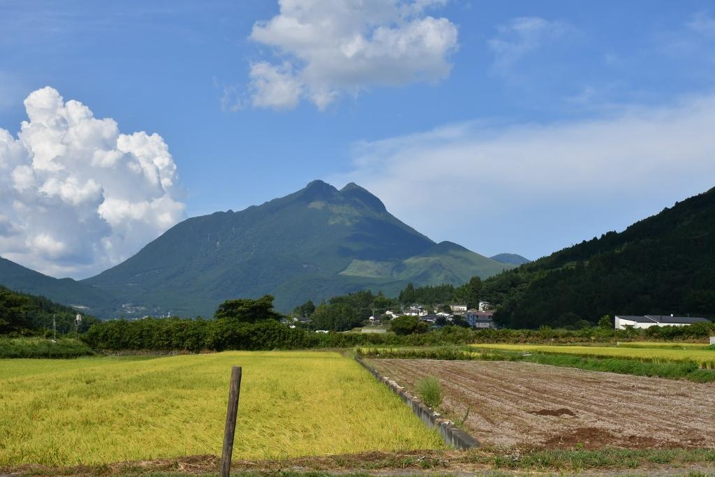 由布岳を一望する小さな宿「蔓蕩蒼」