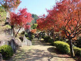 紅葉の季節に訪れたい大分県中津市「耶馬溪ダム記念公園 溪石園」