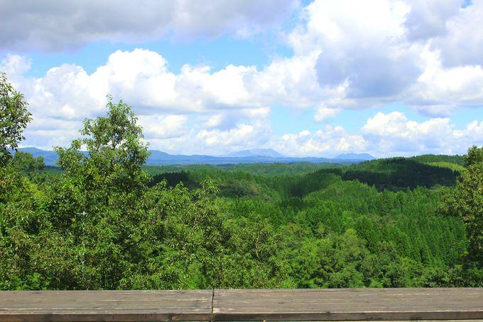 特等席は、阿蘇の山並みを眺めるテラス席!
