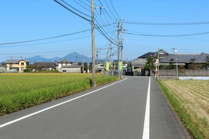 のどかなアクセスに癒やされる!粟嶋神社への道