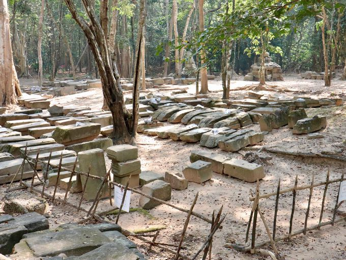 保存整備作業が進む、タ・ネイ遺跡