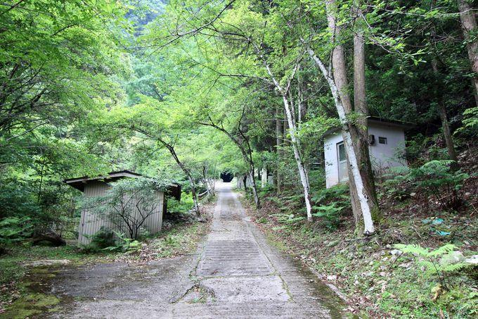 球磨川のほとりの小さな神社