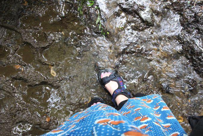 山吹水源へのアクセス